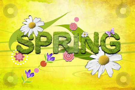 Spring Break, Spring Cleaning and Springing Forward