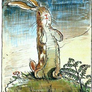 Life Velveteen Rabbit